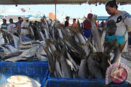 Bupati Indramayu: Olahan ikan bisa penuhi gizi dan cegah kekerdilan