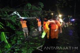 Puting Beliung di Jember Berdampak Satu Orang Terluka