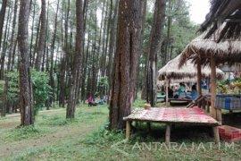 Kunjungan Hutan Wisata Nongko Ijo Madiun Meningkat
