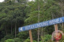 Kaltim miliki 103 ribu hektare perhutanan sosial