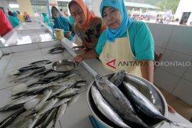 Ikan Cakalang Dominasi Produksi Perikanan Gorontalo Utara