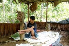 Pria gangguan jiwa Aceh Utara dipasung di kebun