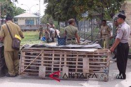Petugas tertibkan pedagang ayam di pasar penampungan Paser