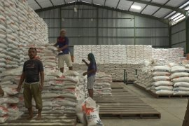 Bupati Tabanan: cadangan pangan cukup
