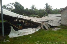 Tiga Kecamatan di Jember Diterjang Angin Puting Beliung