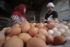 Harga Telur Ayam dan Sayur di Madiun Naik