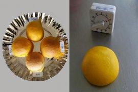 Peneliti IPB kembangkan roti kaya antioksidan