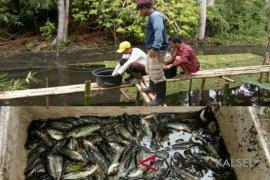 HSU Prepares Fishery Tour Village
