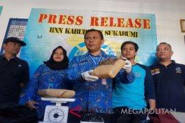 BNNK tangkap mahasiswa pemilik 2,2 kilogram ganja