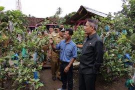 Pjs. Gubernur Lampung Mengunjungi Desa Agrowisata Sumberejo Tanggamus