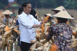Presiden Jokowi yakin Kadin mampu dampingi dua juta petani swadaya di 2023