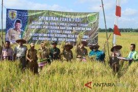 Petani HST Panen Padi Mikongga dan Imvari33
