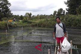 Petani diminta tingkatkan budidaya ikan air tawar