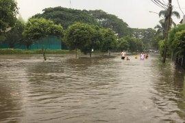 Jalur Trans Kalimantan Banjarmasin-Kotabaru pascabanjir kembali normal