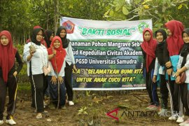 pegiat lingkungan tanam mangrove di Aceh Timur