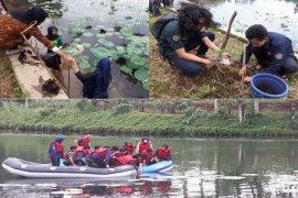 Kolaborasi mahasiswa IPB gelar festival hutan dan air