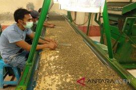 Nilai ekspor kopi di Aceh triwulan sedikit