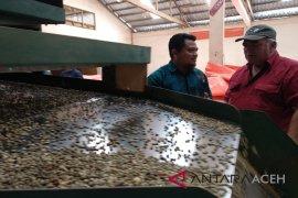 Permintaan ekspor kopi gayo menurun