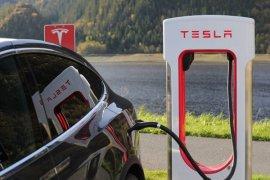 Tesla tolak komentar terkait produksi SUV Model Y