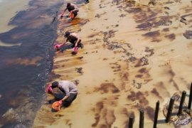 Tumpahan minyak di Teluk Balikpapan disebabkan pipa Pertamina patah