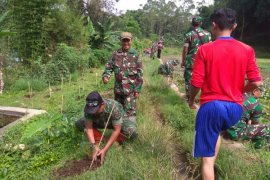 Kodim Garut tanam pohon antisipasi bahaya erosi
