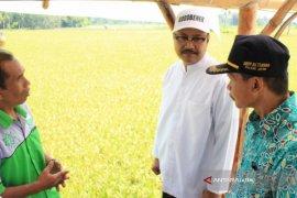 Gus Ipul Dorong Pertanian Organik Bondowoso Jadi Desa Wisata
