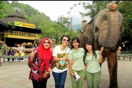 Gajah Sumatera hadiahkan kalungan bunga Istri Kapolda