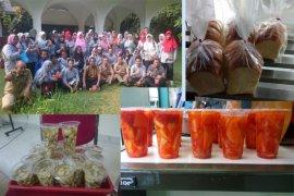 Seafast center IPB gelar pelatihan diversifikasi usaha UMKM Bogor