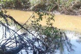 Warga Bengkulu Tengah keluhkan pencemaran Sungai Susup