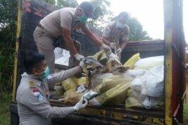 Karantina Entikong musnahkan 10 ton ikan selundupan