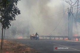 Hutan Taman Nasional Baluran Situbondo Kembali Terbakar