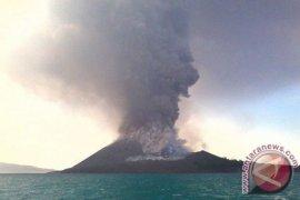 PVMBG : Aktivitas vulkanik Gunung Anak Krakatau Tinggi