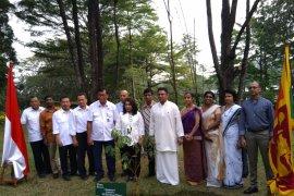 LIPI bantu lestarikan pohon nasional Sri Lanka