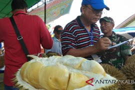 Dirjen hortikultura apresiasi promosi durian unggul di Sanggau