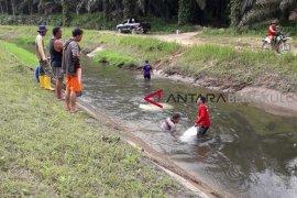 Gubernur Isran Noor harapkan irigasi berfungsi maksimal