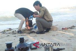 Tim Penegakan Hukum KLHK periksa limbah yang mencemari Pantai Teluk Pikat