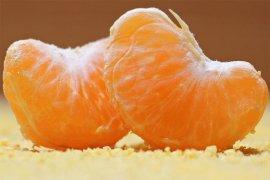 Konsumsi jeruk dapat pelihara daya pandang