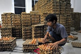 Harga daging dan telur di Sukabumi melambung