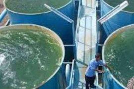 Momen Sumpah Pemuda, air bersih Dumai resmi mengalir