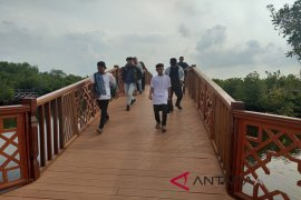 Destinasi wisata taman hutan mangrove kian bergeliat