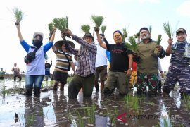Meriahkan HUT Kemerdekaan, penyiapan lahan tanam HPS di Jejangkit dilombakan