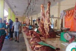 Distan: sapi produktif jangan dijadikan hewan kurban