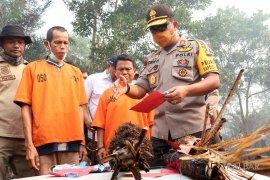 Pelaku pembakaran lahan  di Penajam terancam 5 tahun penjara