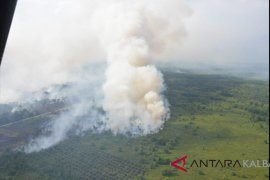 Polres Sintang amankan lima tersangka pembakar lahan