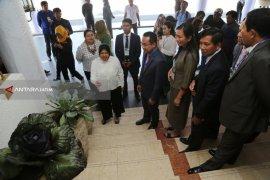 City Parks in Surabaya Built To Absorb Carbon Emission: Mayor