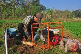 Distan Karawang: Laporkan jika sawah kekurangan air