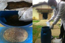 Mahasiswa IPB manfaatkan air kelapa sebagai probiotik alami ayam broiler