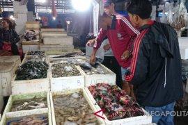 Cuaca membaik, harga ikan laut kembali normal