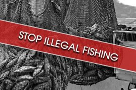 Indonesia has sunk 516 vessels since 2014 for fishing illegally
