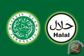 BI encourages halal products development in South Kalimantan